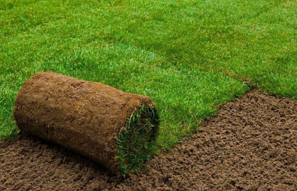 Рулонный натуральный газон для благоустройства детской площадки